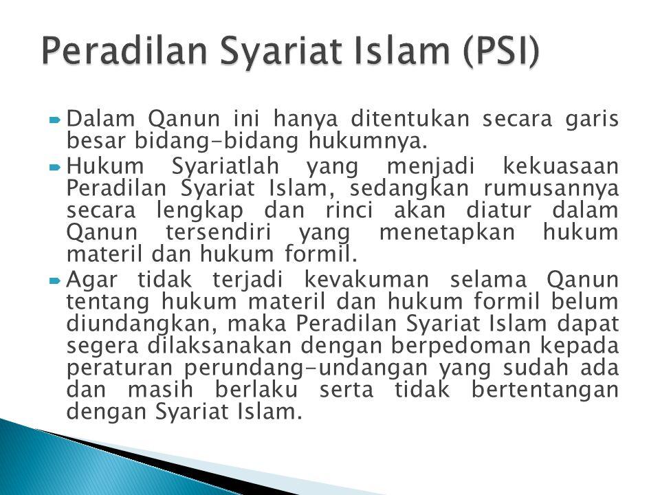  Dalam Qanun ini hanya ditentukan secara garis besar bidang-bidang hukumnya.  Hukum Syariatlah yang menjadi kekuasaan Peradilan Syariat Islam, sedan