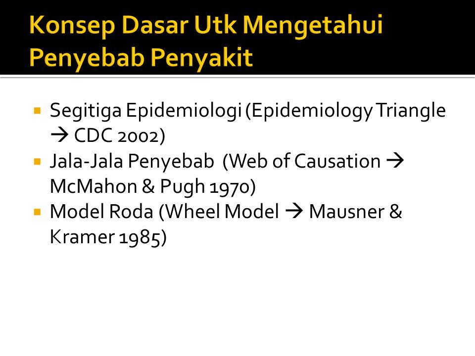  Segitiga Epidemiologi (Epidemiology Triangle  CDC 2002)  Jala-Jala Penyebab (Web of Causation  McMahon & Pugh 1970)  Model Roda (Wheel Model  M