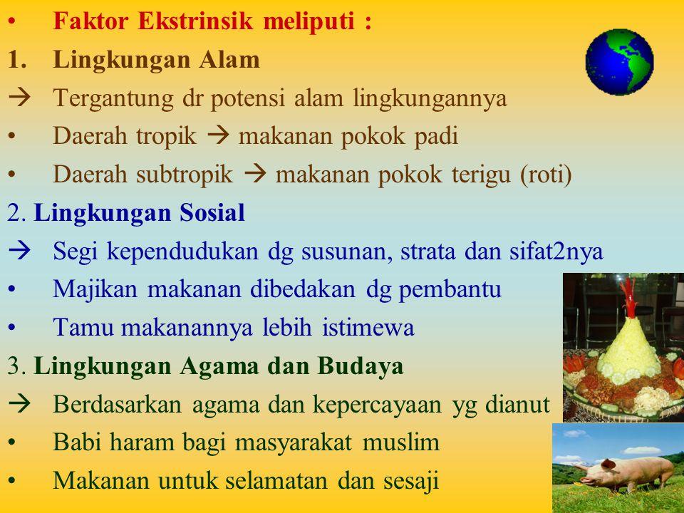 Faktor Ekstrinsik meliputi : 1.Lingkungan Alam  Tergantung dr potensi alam lingkungannya Daerah tropik  makanan pokok padi Daerah subtropik  makanan pokok terigu (roti) 2.