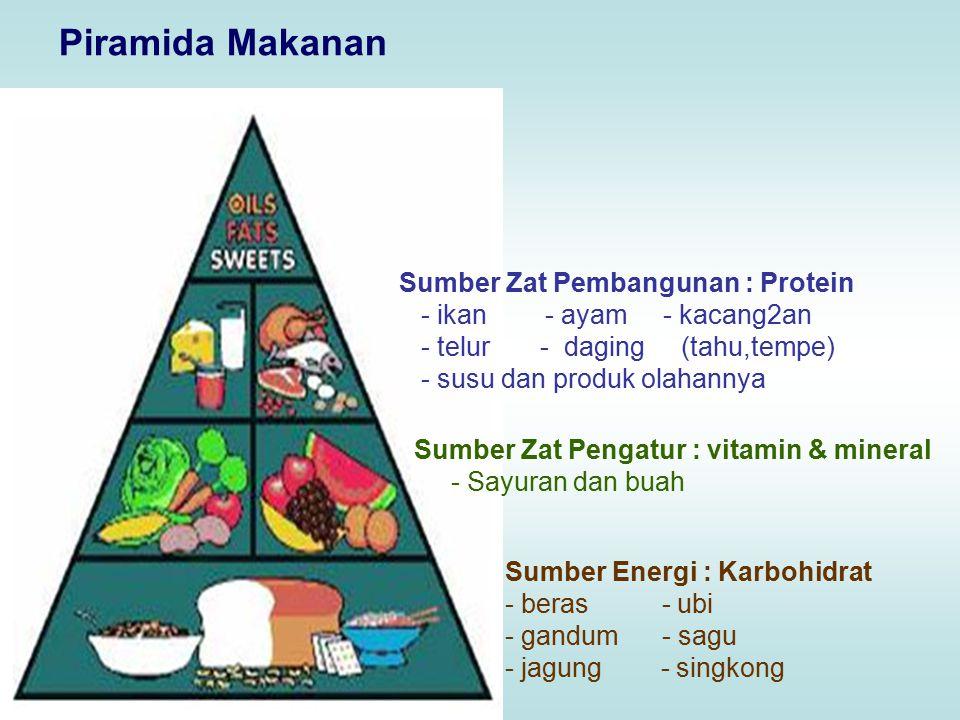 Piramida Makanan Sumber Energi : Karbohidrat - beras - ubi - gandum - sagu - jagung - singkong Sumber Zat Pengatur : vitamin & mineral - Sayuran dan buah Sumber Zat Pembangunan : Protein - ikan - ayam - kacang2an - telur - daging (tahu,tempe) - susu dan produk olahannya