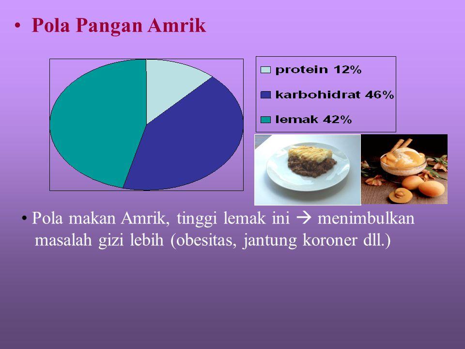 Pola Pangan Amrik Pola makan Amrik, tinggi lemak ini  menimbulkan masalah gizi lebih (obesitas, jantung koroner dll.)