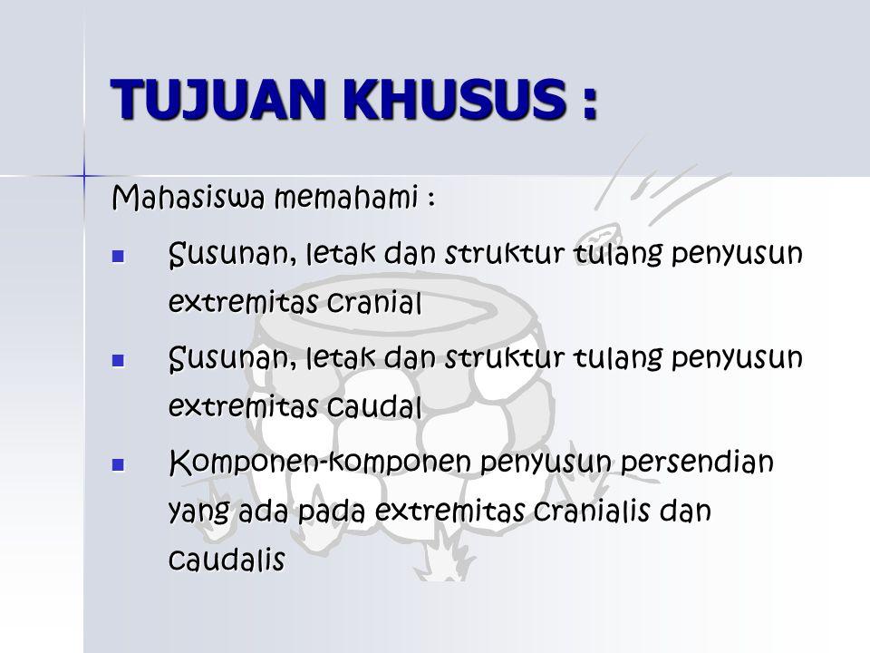 TUJUAN KHUSUS : Mahasiswa memahami : Susunan, letak dan struktur tulang penyusun extremitas cranial Susunan, letak dan struktur tulang penyusun extrem