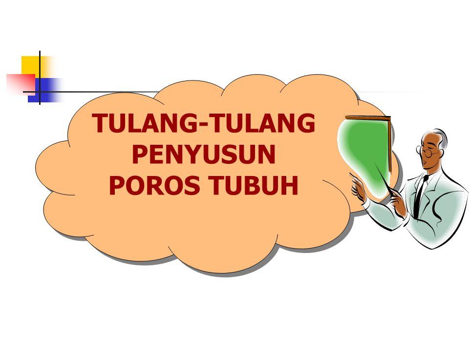 TULANG-TULANG PENYUSUN POROS TUBUH
