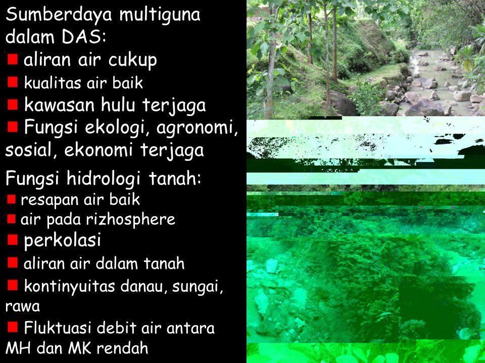 Sumberdaya multiguna dalam DAS: aliran air cukup kualitas air baik kawasan hulu terjaga Fungsi ekologi, agronomi, sosial, ekonomi terjaga Fungsi hidro