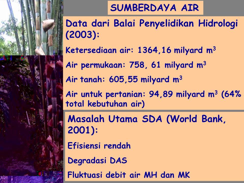 SUMBERDAYA AIR Data dari Balai Penyelidikan Hidrologi (2003): Ketersediaan air: 1364,16 milyard m 3 Air permukaan: 758, 61 milyard m 3 Air tanah: 605,55 milyard m 3 Air untuk pertanian: 94,89 milyard m 3 (64% total kebutuhan air) Masalah Utama SDA (World Bank, 2001): Efisiensi rendah Degradasi DAS Fluktuasi debit air MH dan MK