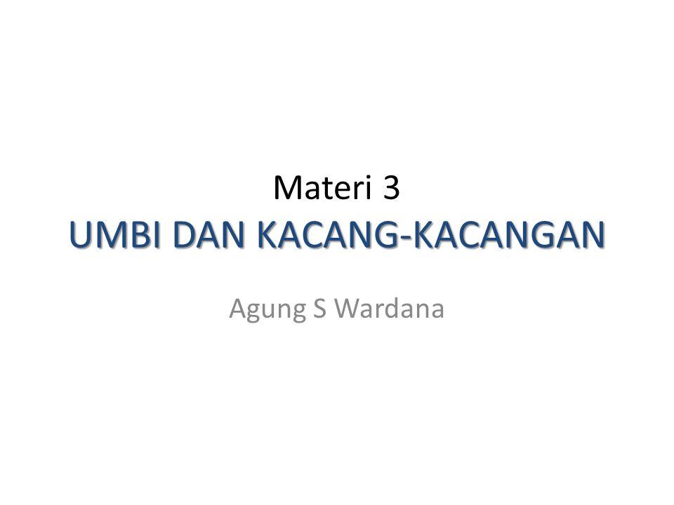 UMBI DAN KACANG-KACANGAN Materi 3 UMBI DAN KACANG-KACANGAN Agung S Wardana