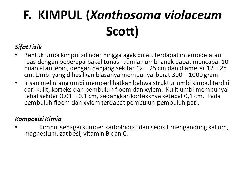 F. KIMPUL (Xanthosoma violaceum Scott) Sifat Fisik Bentuk umbi kimpul silinder hingga agak bulat, terdapat internode atau ruas dengan beberapa bakal t