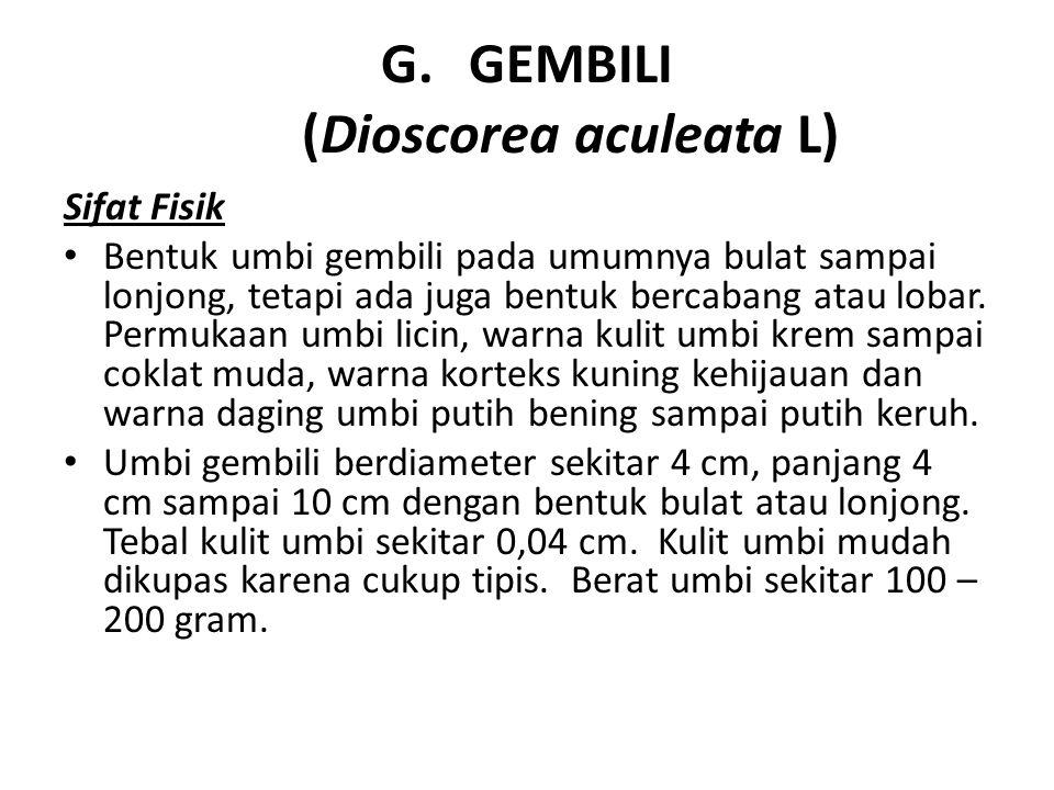 G.GEMBILI (Dioscorea aculeata L) Sifat Fisik Bentuk umbi gembili pada umumnya bulat sampai lonjong, tetapi ada juga bentuk bercabang atau lobar. Permu