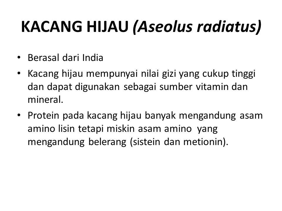 KACANG HIJAU (Aseolus radiatus) Berasal dari India Kacang hijau mempunyai nilai gizi yang cukup tinggi dan dapat digunakan sebagai sumber vitamin dan