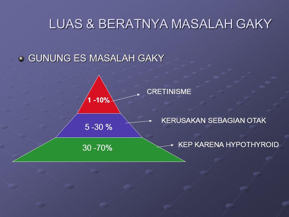 LUAS & BERATNYA MASALAH GAKY GUNUNG ES MASALAH GAKY 30 -70% 5 -30 % 1 -10% KEP KARENA HYPOTHYROID KERUSAKAN SEBAGIAN OTAK CRETINISME