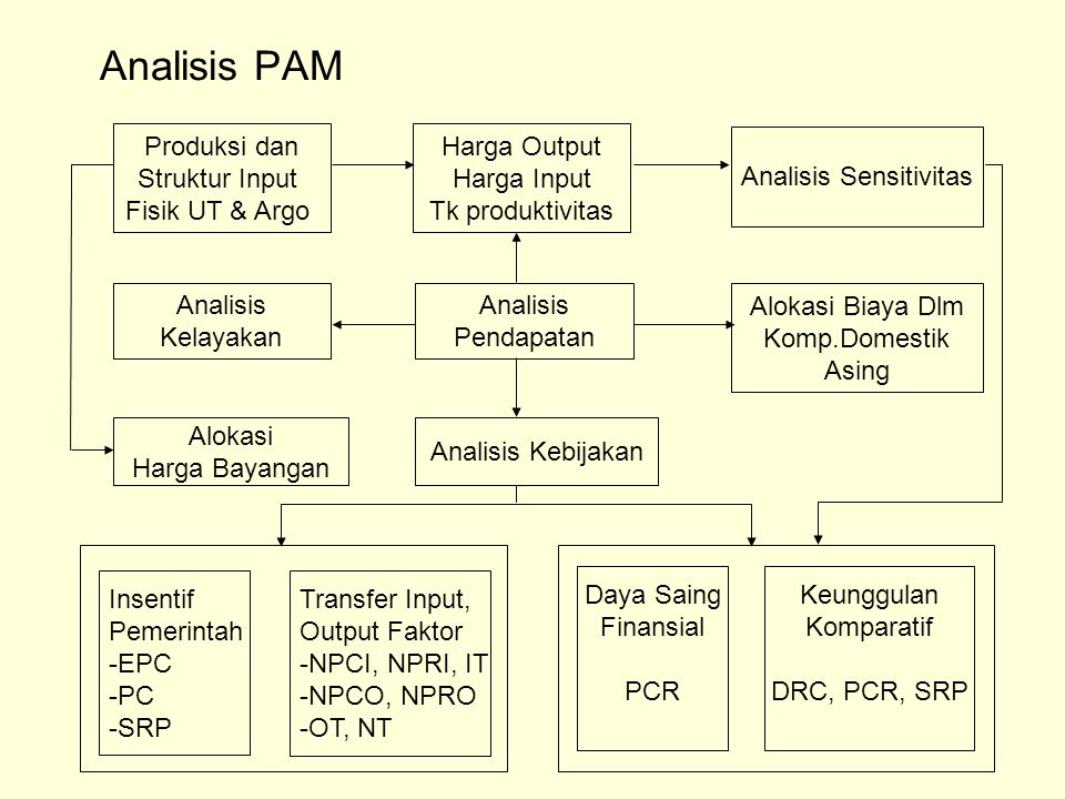 Analisis PAM Produksi dan Struktur Input Fisik UT & Argo Harga Output Harga Input Tk produktivitas Analisis Sensitivitas Analisis Kelayakan Analisis P