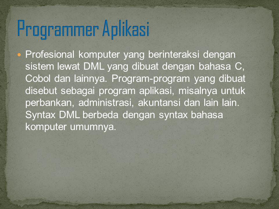 Profesional komputer yang berinteraksi dengan sistem lewat DML yang dibuat dengan bahasa C, Cobol dan lainnya. Program-program yang dibuat disebut seb