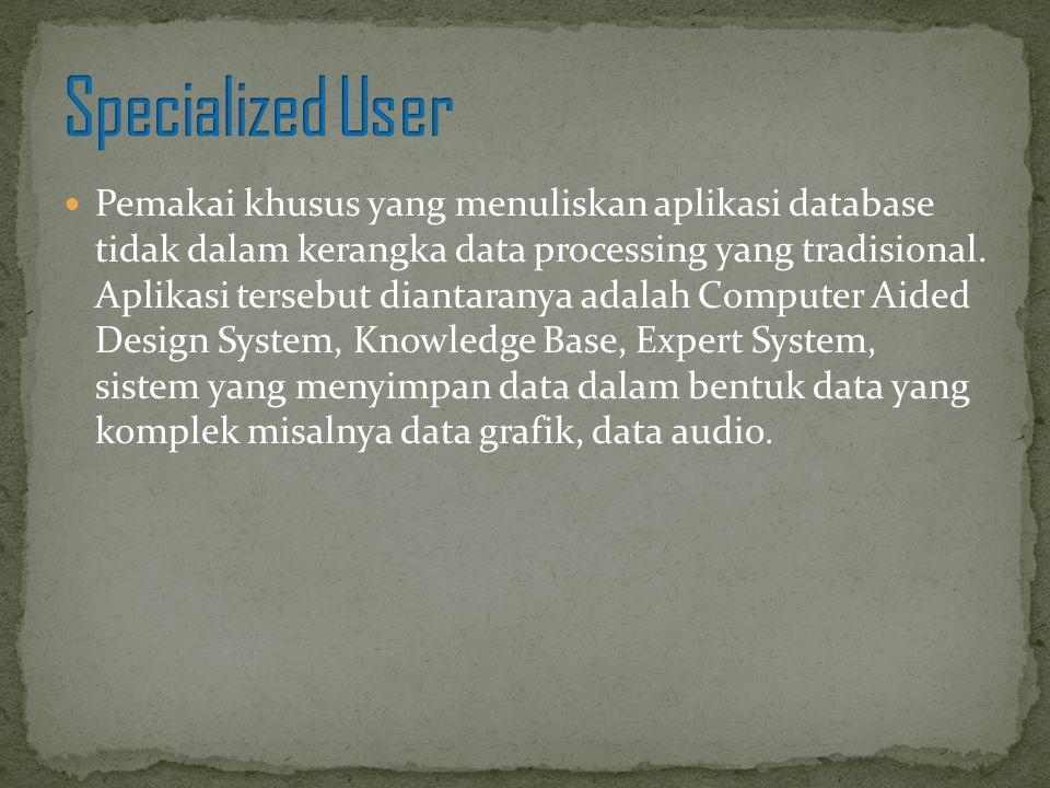 Pemakai khusus yang menuliskan aplikasi database tidak dalam kerangka data processing yang tradisional. Aplikasi tersebut diantaranya adalah Computer