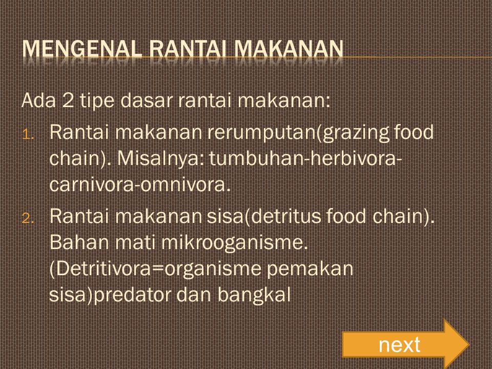 Ada 2 tipe dasar rantai makanan: 1. Rantai makanan rerumputan(grazing food chain).