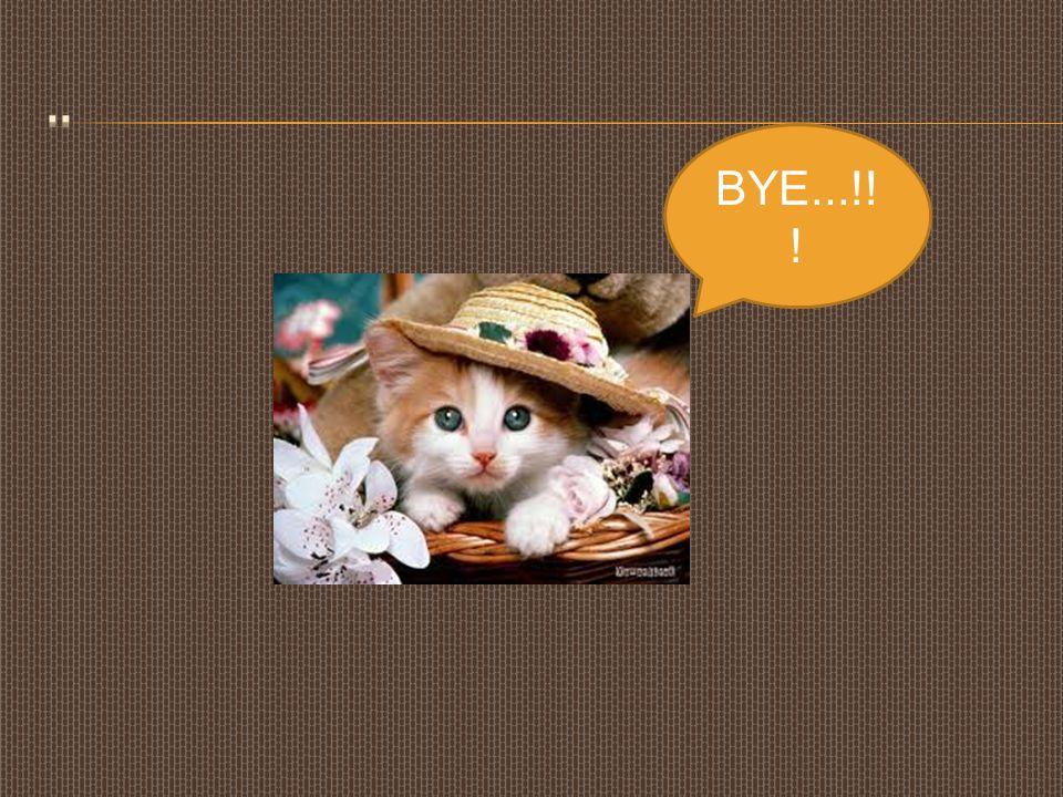 BYE...!! !