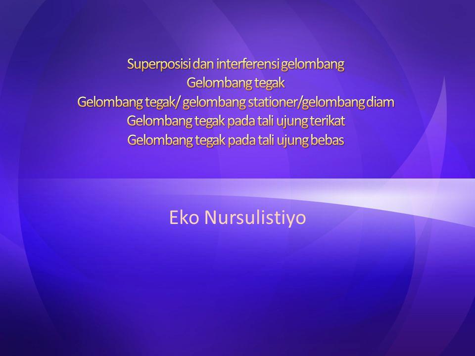 Eko Nursulistiyo