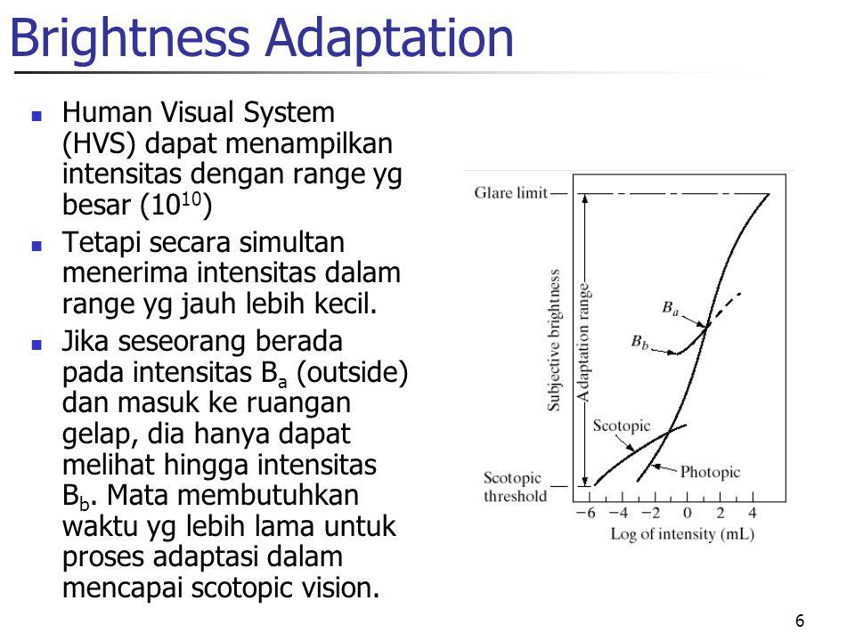 6 Brightness Adaptation Human Visual System (HVS) dapat menampilkan intensitas dengan range yg besar (10 10 ) Tetapi secara simultan menerima intensitas dalam range yg jauh lebih kecil.