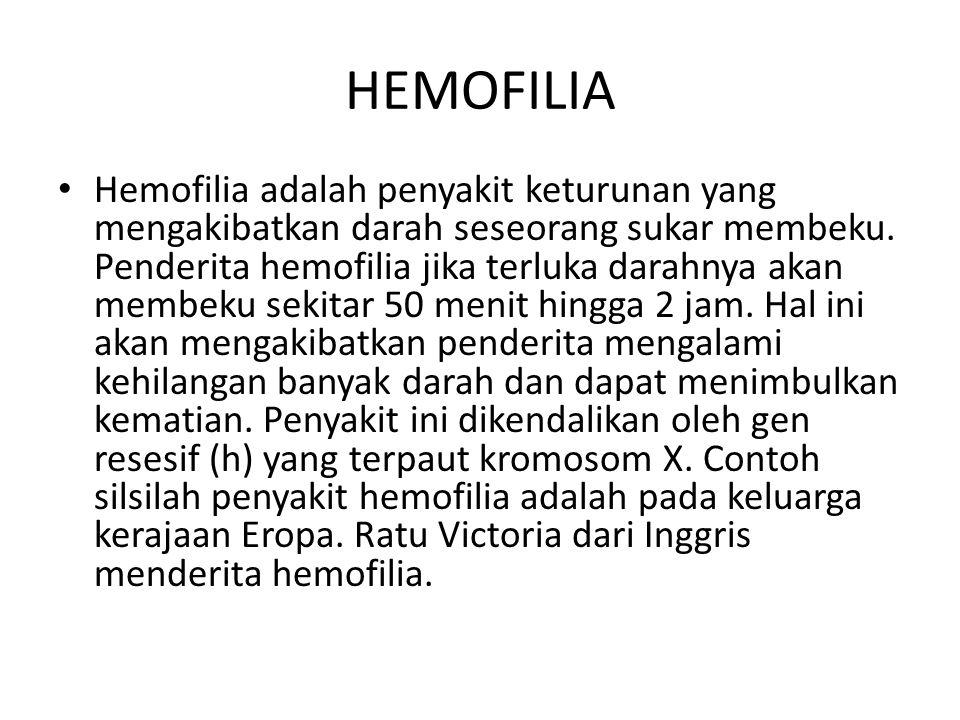Penderita hemofilia memiliki genotip yang berbeda antara wanita dan laki-laki.