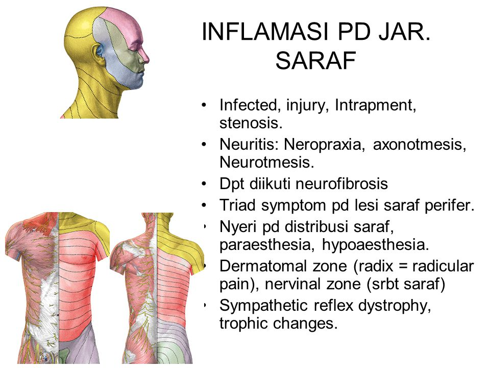 INFLAMASI PD JAR.SARAF Infected, injury, Intrapment, stenosis.