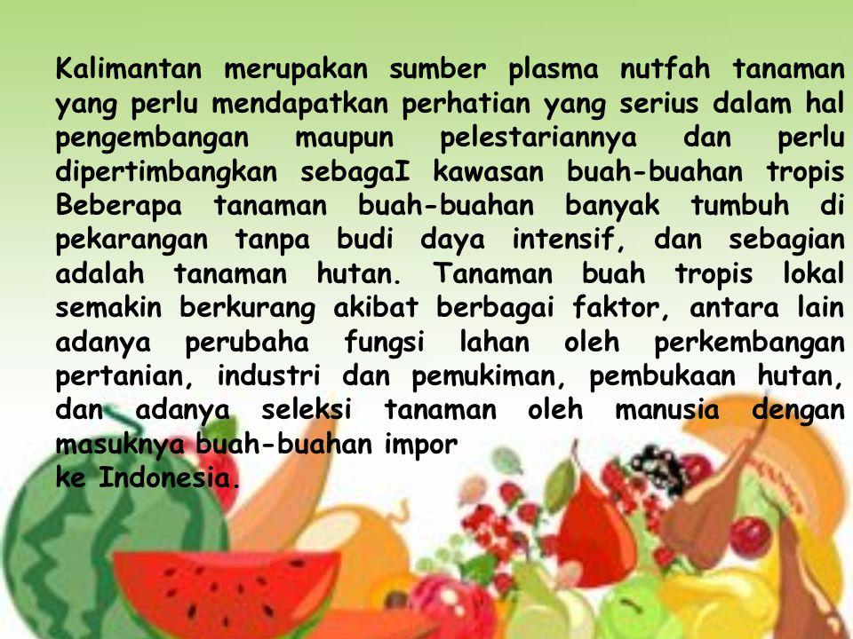 Oleh karena itu, rasa buah juga dipengaruhi oleh tingkat kemasakan.