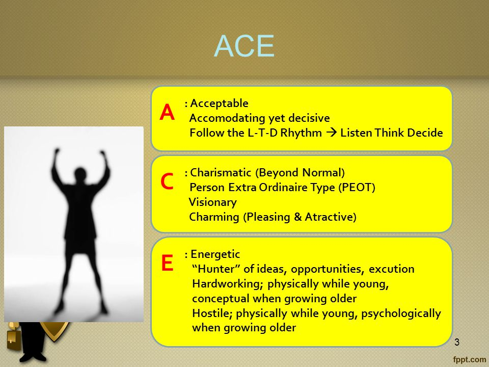 ACE 3 A : Acceptable Accomodating yet decisive Follow the L-T-D Rhythm  Listen Think Decide C : Charismatic (Beyond Normal) Person Extra Ordinaire Type (PEOT) Visionary Charming (Pleasing & Atractive) E : Energetic Hunter of ideas, opportunities, excution Hardworking; physically while young, conceptual when growing older Hostile; physically while young, psychologically when growing older