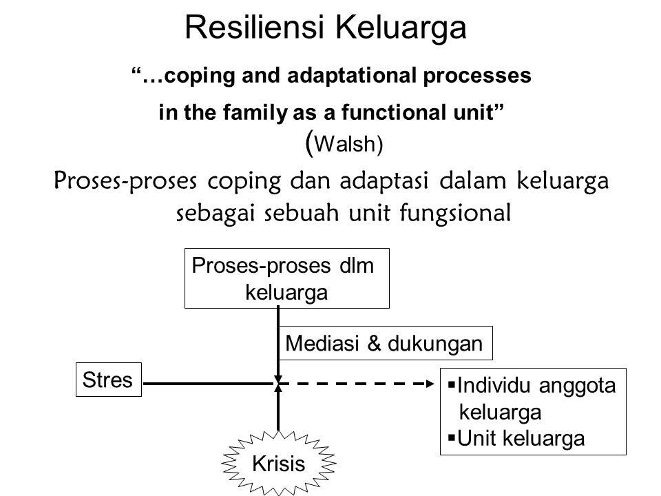 Resiliensi Keluarga …coping and adaptational processes in the family as a functional unit ( Walsh) Proses-proses coping dan adaptasi dalam keluarga sebagai sebuah unit fungsional Stres Proses-proses dlm keluarga  Individu anggota keluarga  Unit keluarga Mediasi & dukungan Krisis