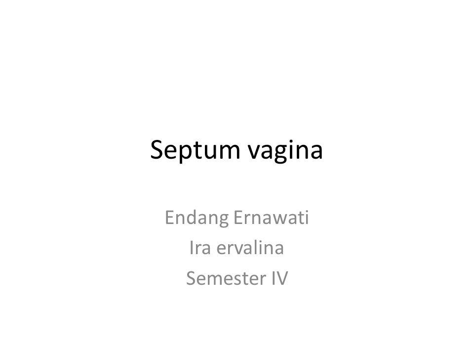 Septum vagina Endang Ernawati Ira ervalina Semester IV