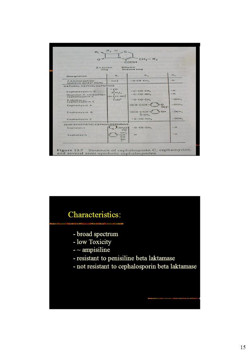 15 Characteristics: - broad spectrum - low Toxicity - ~ ampisiline - resistant to penisiline beta laktamase - not resistant to cephalosporin beta laktamase