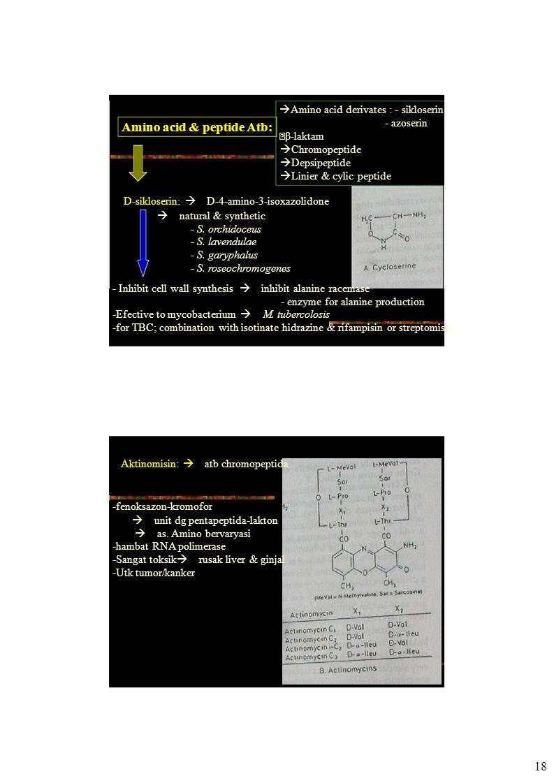 Amino acid & peptide Atb:  Amino acid derivates : - sikloserin - azoserin  β-laktam  Chromopeptide  Depsipeptide  Linier & cylic peptide D-sikloserin:  D-4-amino-3-isoxazolidone  natural & synthetic - S.
