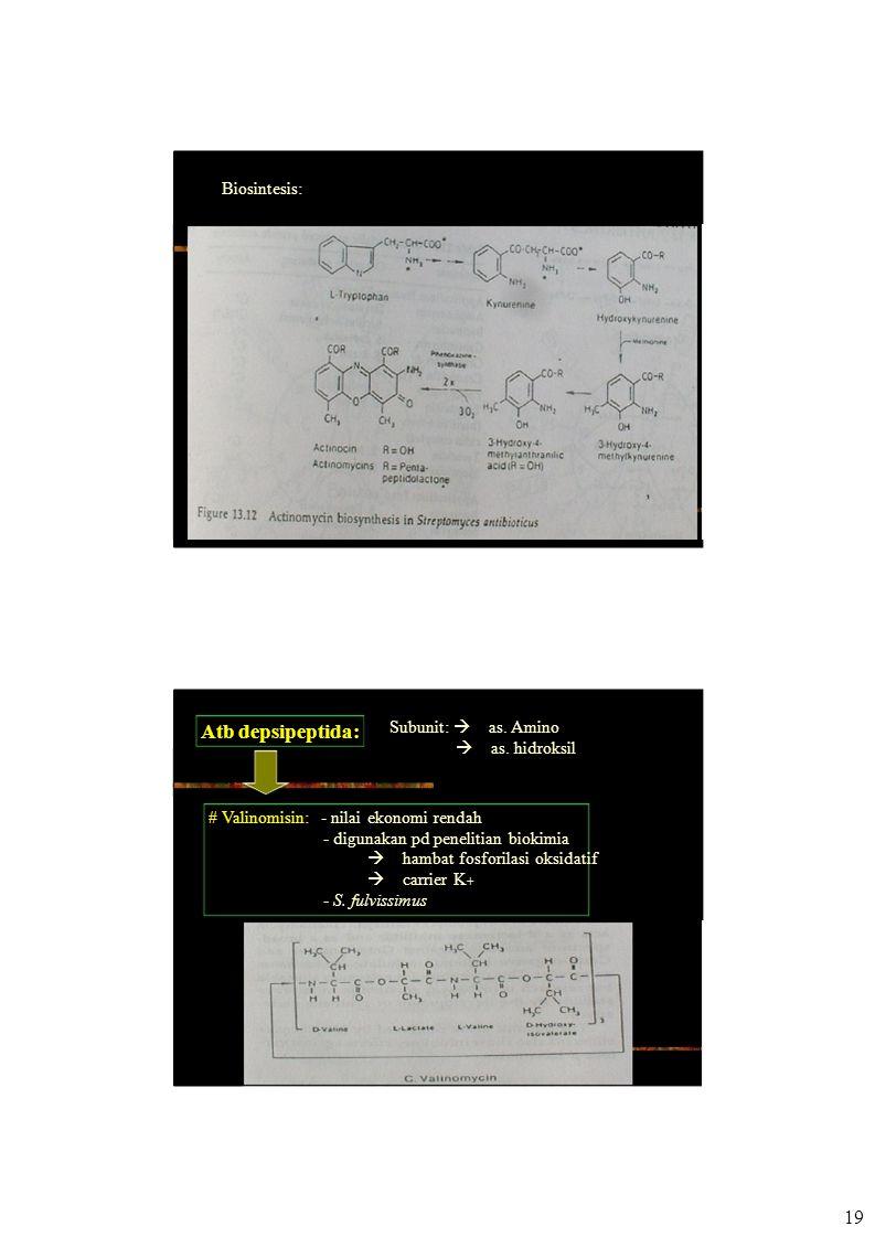 Biosintesis: Atb depsipeptida: Subunit:  as. Amino  as. hidroksil # Valinomisin: - nilai ekonomi rendah - digunakan pd penelitian biokimia  hamb