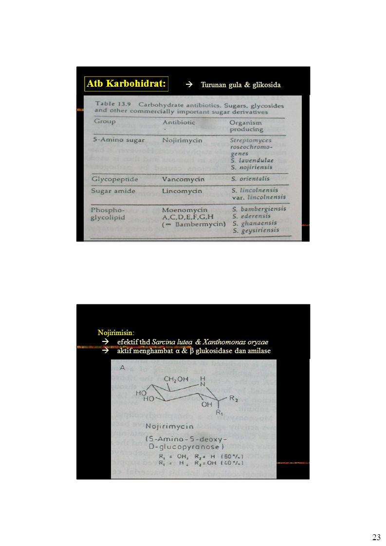 Atb Karbohidrat:  Turunan gula & glikosida Nojirimisin:  efektif thd Sarcina lutea & Xanthomonas oryzae  aktif menghambat α & β glukosidase dan amilase 23