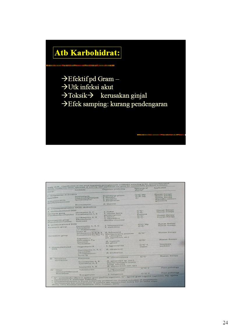 24 Atb Karbohidrat:  Efektif pd Gram –  Utk infeksi akut  Toksik  kerusakan ginjal  Efek samping: kurang pendengaran