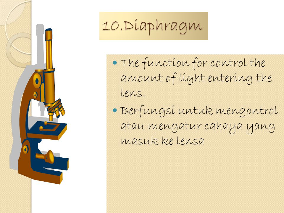 9.Stage The function is to clip the mount/speciment Berfungsi untuk memotong contoh atau bahan