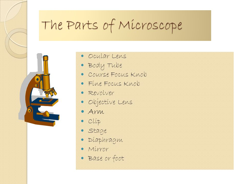 Chapter 1.2 Microscope The first inventor of microscope is Antonie van leeuwenhoek The microscope is classified into monocular and binocular