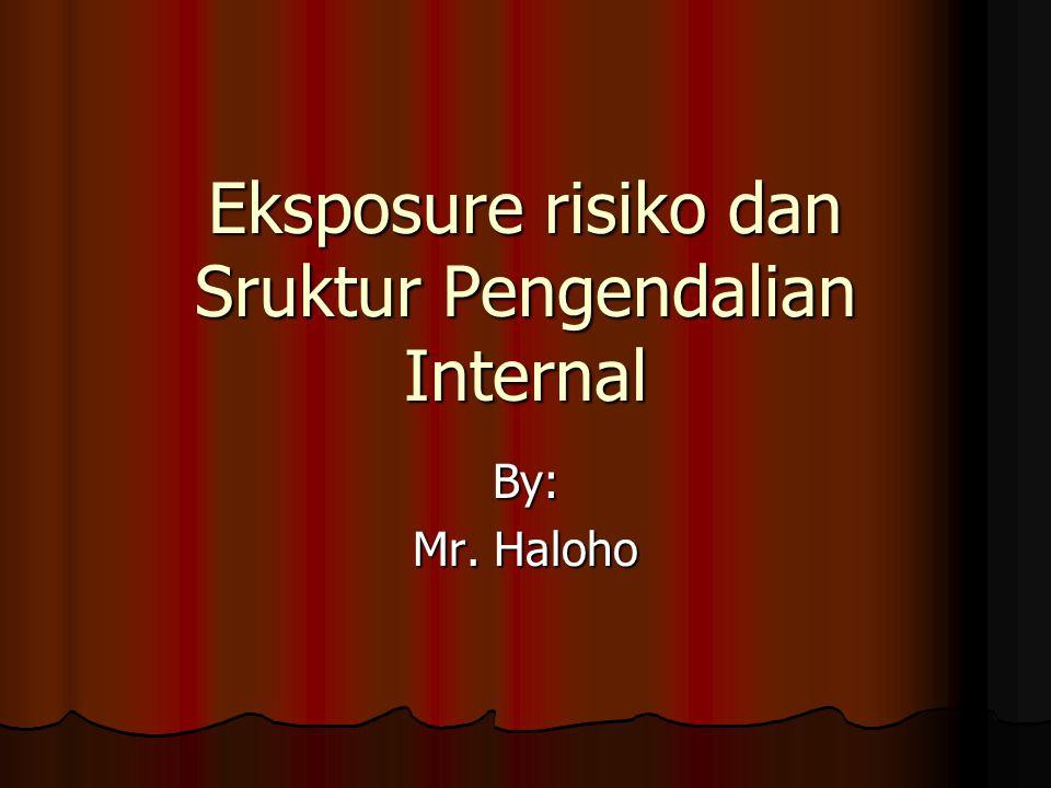 Eksposure risiko dan Sruktur Pengendalian Internal By: Mr. Haloho