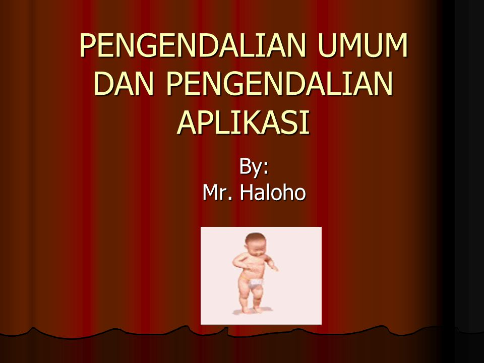 PENGENDALIAN UMUM DAN PENGENDALIAN APLIKASI By: Mr. Haloho