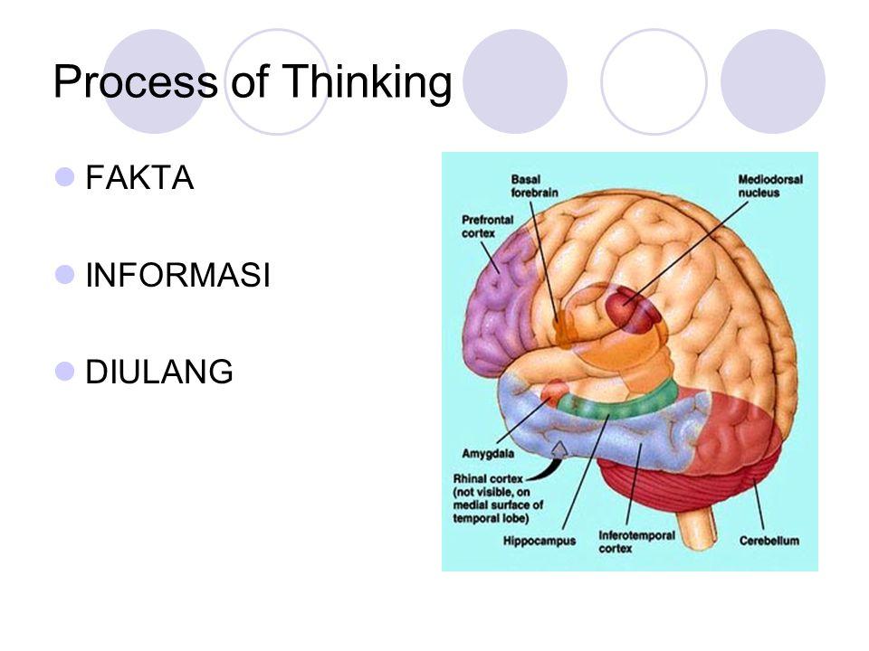 Process of Thinking FAKTA INFORMASI DIULANG