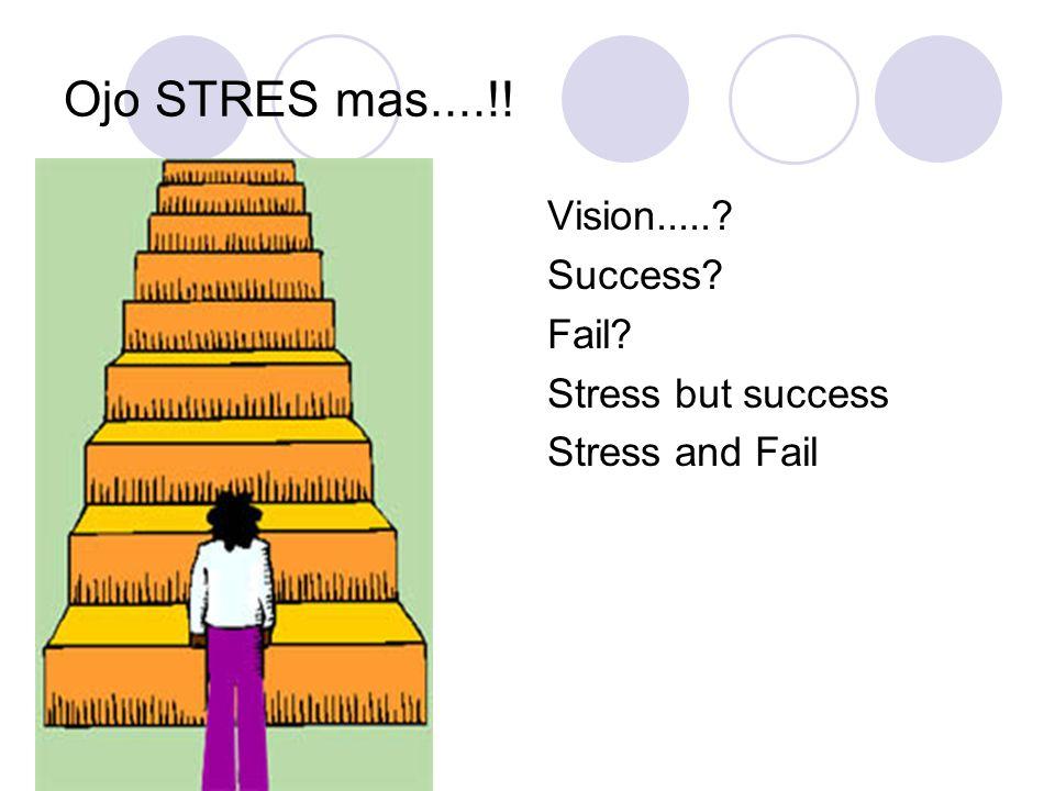 Ojo STRES mas....!! Vision.....? Success? Fail? Stress but success Stress and Fail