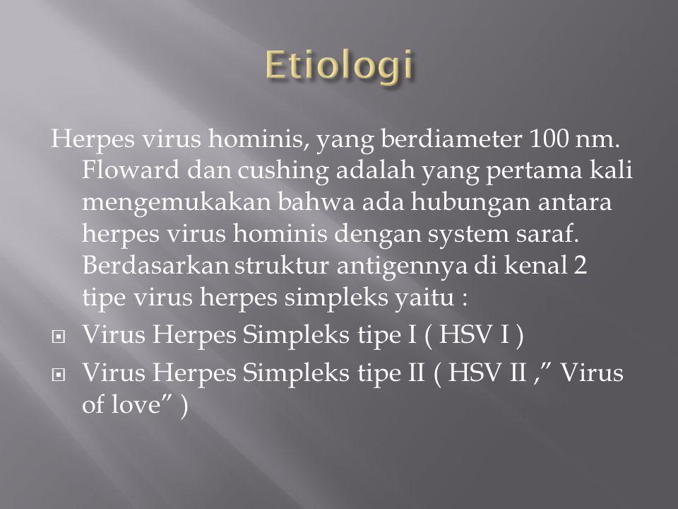 Herpes virus hominis, yang berdiameter 100 nm. Floward dan cushing adalah yang pertama kali mengemukakan bahwa ada hubungan antara herpes virus homini
