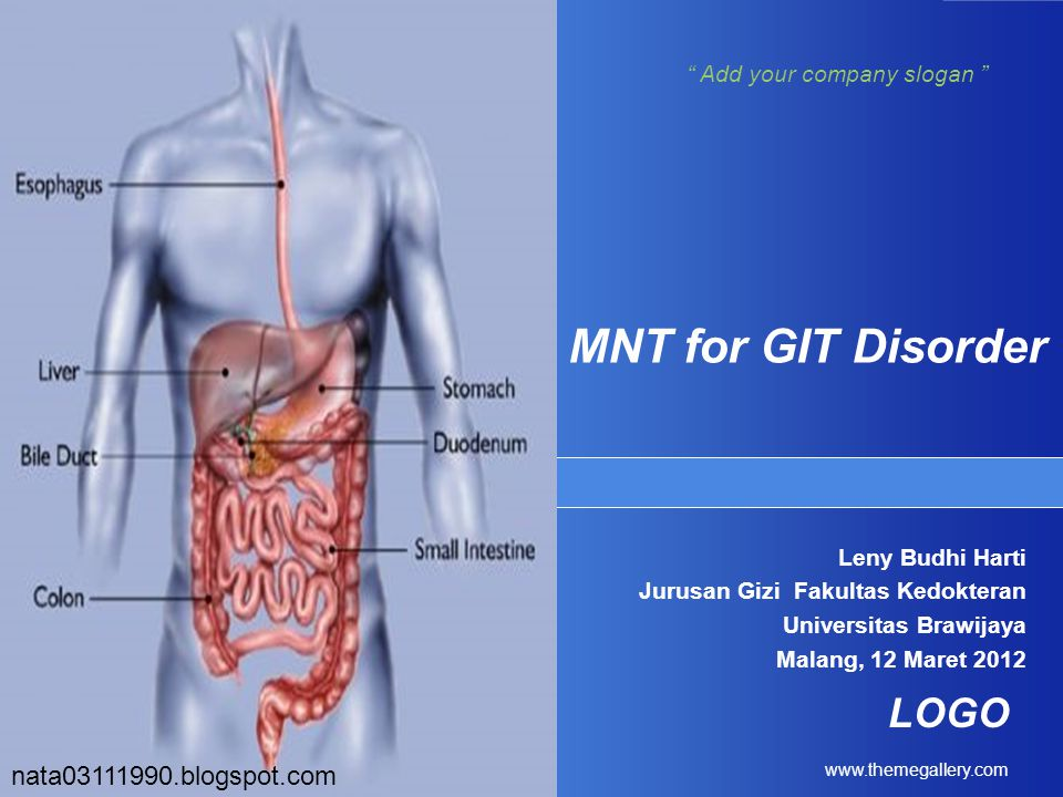 LOGO Add your company slogan MNT for GIT Disorder Leny Budhi Harti Jurusan Gizi Fakultas Kedokteran Universitas Brawijaya Malang, 12 Maret 2012 1www.themegallery.com nata03111990.blogspot.com