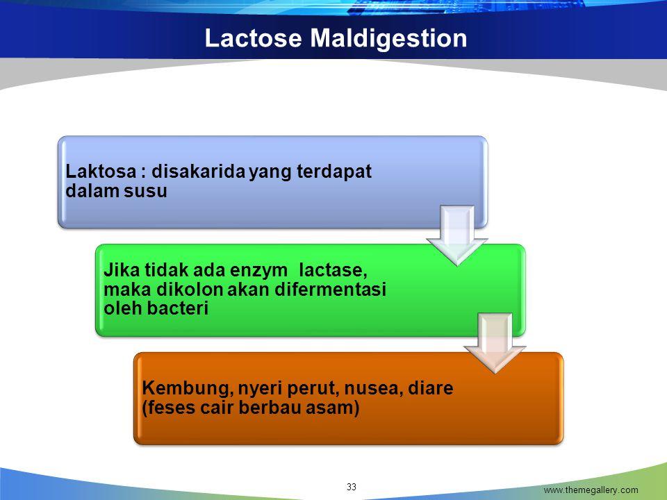 Lactose Maldigestion www.themegallery.com 33