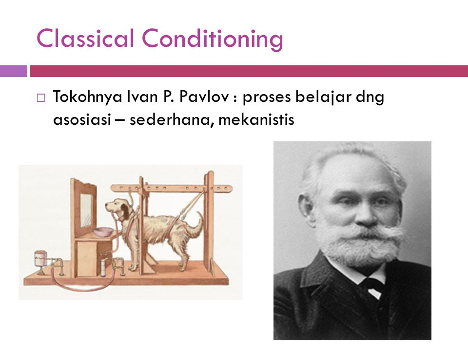 Classical Conditioning  Tokohnya Ivan P.