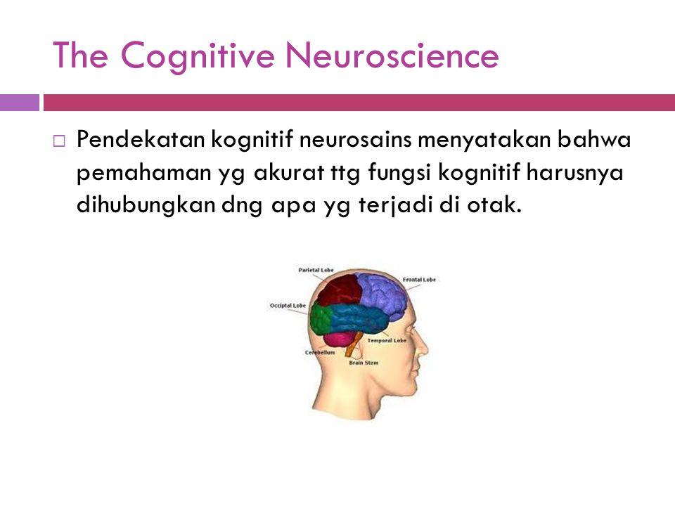 The Cognitive Neuroscience  Pendekatan kognitif neurosains menyatakan bahwa pemahaman yg akurat ttg fungsi kognitif harusnya dihubungkan dng apa yg t