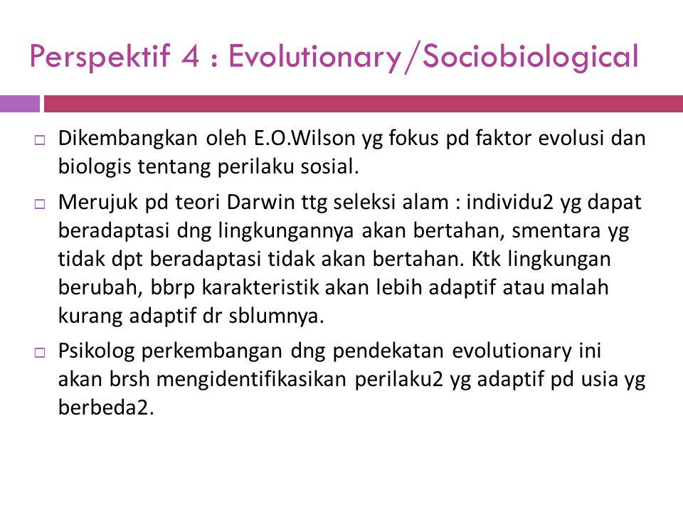 Perspektif 4 : Evolutionary/Sociobiological  Dikembangkan oleh E.O.Wilson yg fokus pd faktor evolusi dan biologis tentang perilaku sosial.  Merujuk