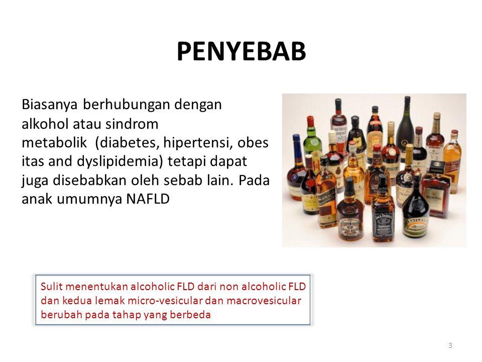 PENYEBAB Biasanya berhubungan dengan alkohol atau sindrom metabolik (diabetes, hipertensi, obes itas and dyslipidemia) tetapi dapat juga disebabkan oleh sebab lain.