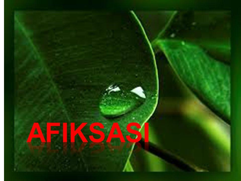 Imbuhan asing Afiksasi Bahasa Indonesia mempunyai banyak kata yang berasal dari bahasa lain seperti bahasa Arab, Cina, Sanskerta, Portugis, dan Inggris.