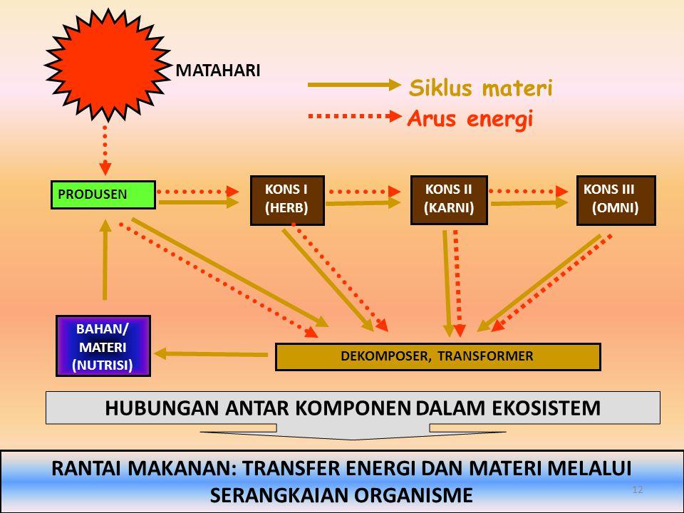 PRODUSEN KONS I (HERB) KONS II (KARNI) KONS III (OMNI) DEKOMPOSER, TRANSFORMER BAHAN/ MATERI (NUTRISI) MATAHARI Siklus materi Arus energi RANTAI MAKAN