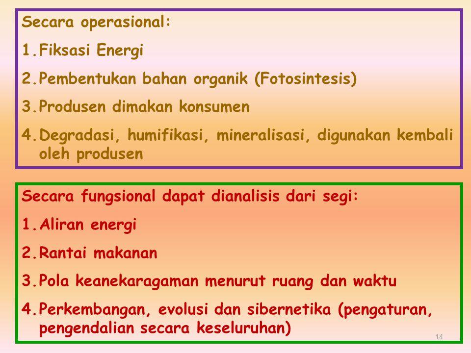 Secara operasional: 1.Fiksasi Energi 2.Pembentukan bahan organik (Fotosintesis) 3.Produsen dimakan konsumen 4.Degradasi, humifikasi, mineralisasi, dig
