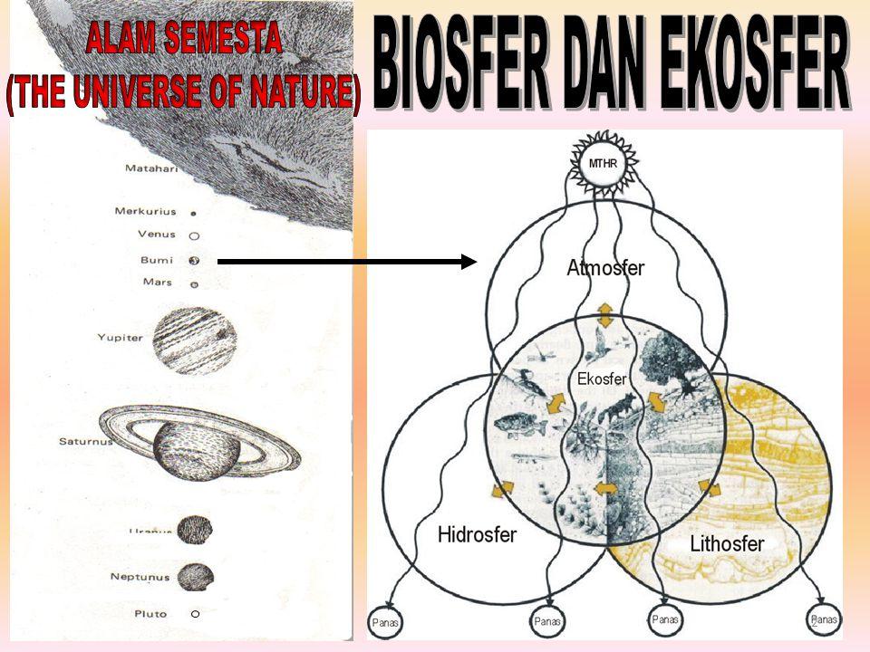 Cermin dari kestabilan ekosistem 13