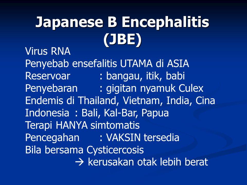 Japanese B Encephalitis (JBE) Virus RNA Penyebab ensefalitis UTAMA di ASIA Reservoar : bangau, itik, babi Penyebaran : gigitan nyamuk Culex Endemis di Thailand, Vietnam, India, Cina Indonesia : Bali, Kal-Bar, Papua Terapi HANYA simtomatis Pencegahan : VAKSIN tersedia Bila bersama Cysticercosis  kerusakan otak lebih berat